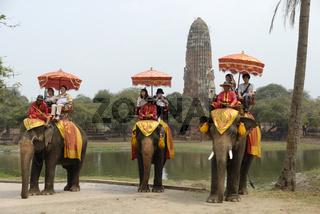 Tourists on elephants in Ayutthaya