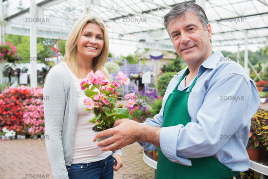 Garden center worker holding plant standing with woman