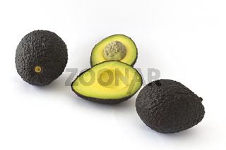 Avocados - persea americana