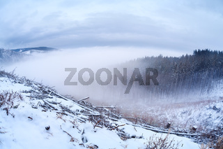 Harz mountainf in winter