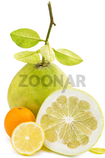 Pomelo fruit with cut lemon and orange, on white
