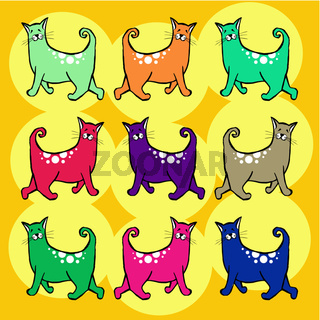 Cats with curly tail pattern