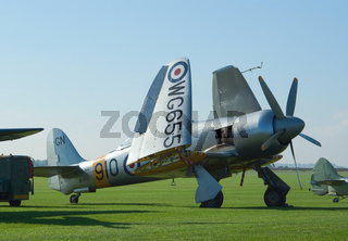 Hawker Sea Fury with folded wings