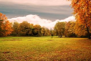 autumns background