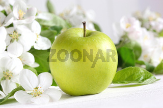 Delicious green apple with blossoms