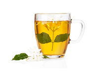 Green tea with jasmine flowers over white
