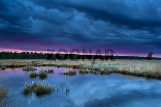 sunset during storm over swamp