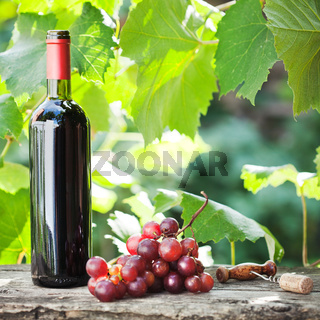 Wine bottle and bunch of grapes