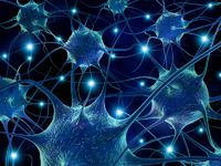 3d rendering illustration of neurons.