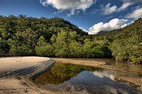 Flussmuendung in den Tropen