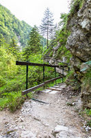 Hiking path in the Austrian Alps