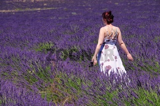 Lavendelfeld mit junger Frau - lavender field and young woman 02