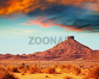 Prairie in Morocco