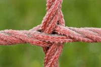 red rope detail