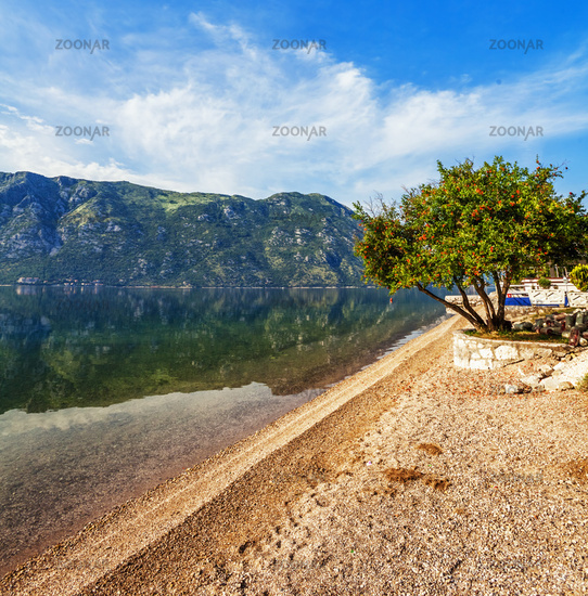 beach with sea and mountain views.  Montenegro