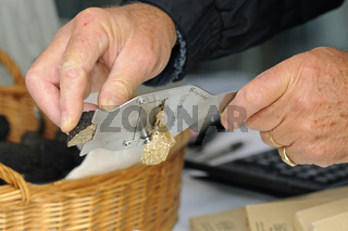 Schwarze Trüffel wird mit Hilfe eines Trüffelhobels in dünne Scheiben geschnitten / Black truffle being finely sliced with a truffle slicer