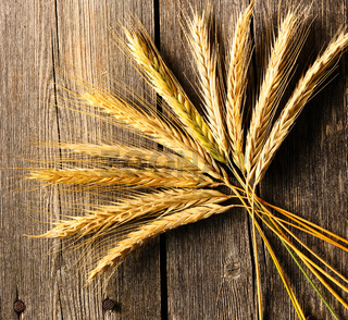 Rye spikelets over wooden background
