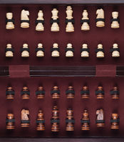 chessmen in the box