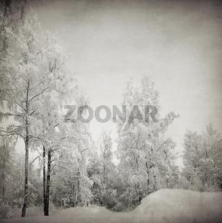grungy winter landscape