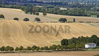 UK Oxfordshire Streatley Country Landscape