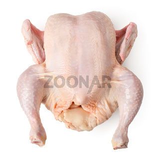 Raw chicken isolated