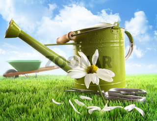 Green watering can with large daisy against sky