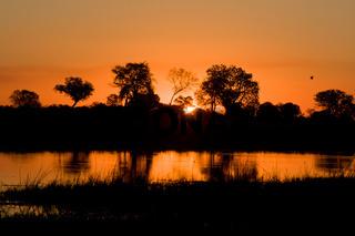 Sonnenuntergang im Okavango-Delta