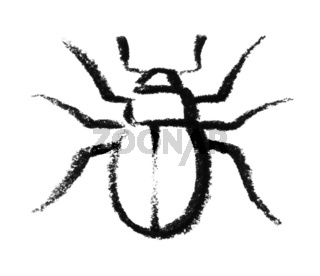 sketched beetle