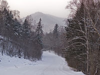 Winter cloudy day on taiga road