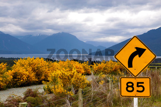 Yellow broom bushes and road sign at the Milford Road