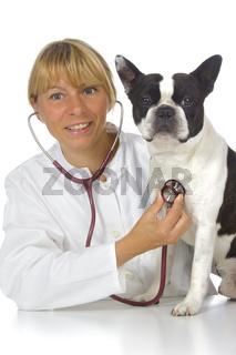 Ärztin, Tierärztin