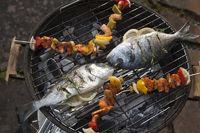 Fisch auf Grill.jpg