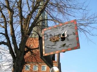 Achtung schwimmende Enten !