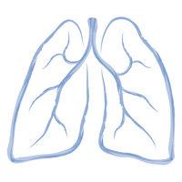 Lunge abstrakt