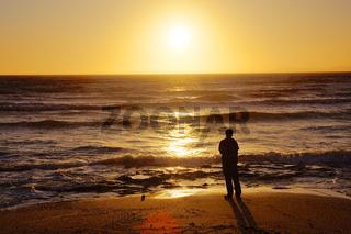 Einsamer Beobachter am Strand