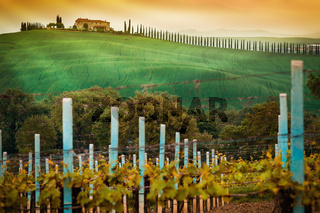 Rural countryside in Italy region of Tuscany
