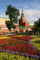 Blumen am Kreml