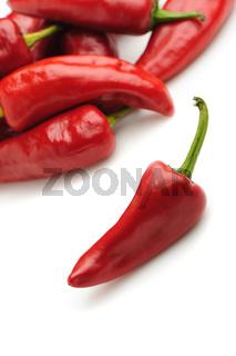 Red bitter pepper