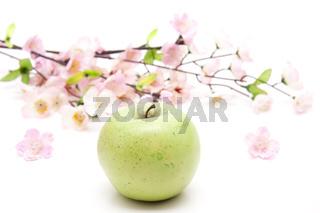 Apfel mit rosa Blumezweig