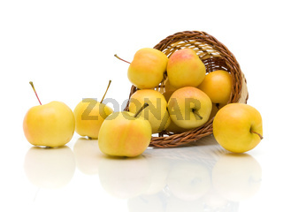 yellow apples in a basket on a white background