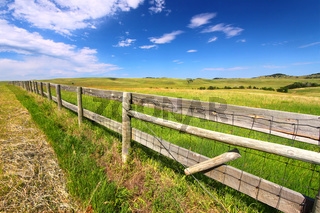 Prairie Fenceline South Dakota
