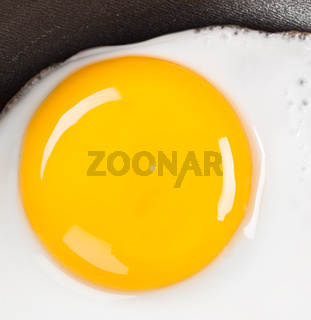 fried eggs close up