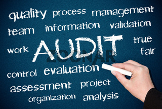 AUDIT - Business Concept