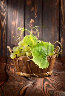 Grapes on a wooden background