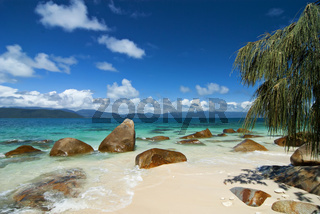 Tropical beach with rocks, tree and clear water