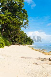 Pristine Untouched White Sand Beach Paradise