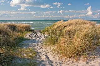 Weg durch Dünen am Strand der Ostsee bei Heiligenhafen