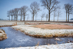 frozen canal in Dutch farmland