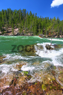 Yellowstone River Rapids