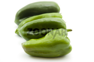 Frische grüne Paprika